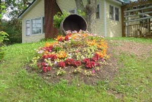 Flower Bed Installation